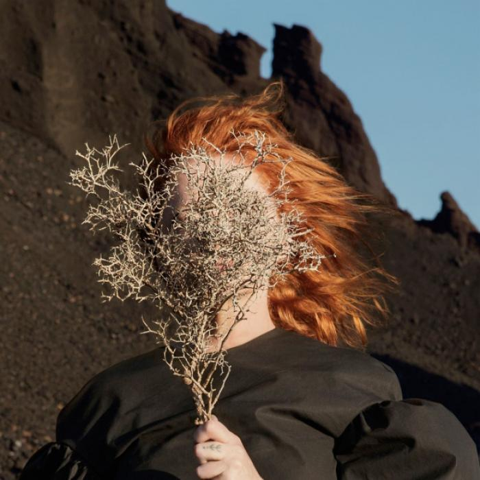 goldfrapp-silver-eye